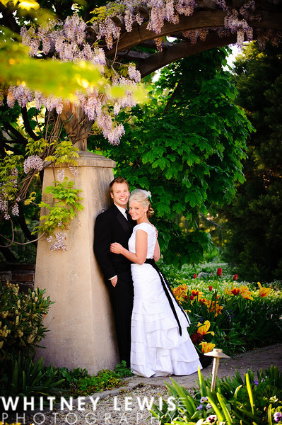 Morinda Gardens, flowers surrounding bride and groom