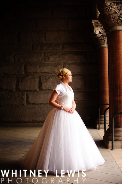 dramatic lighting, ball gown, old stone and pillar, Salt Lake City & County Bulding