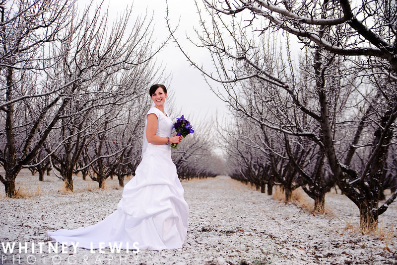Utah Bridal Photography, Provo Mental Health Hospital